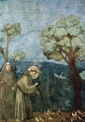 San Francesco Giotto